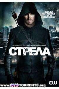 Стрела [01 сезон: 01-23 серии из 23] | BDRemux 1080p | D, P | Лицензия