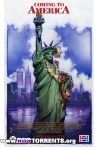 Поездка в Америку | BDRip