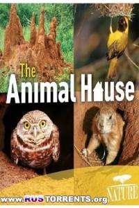 PBS: Природа - Дом животных | HDRip