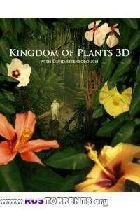 Царство растений [3 из 3] | BDRip | A