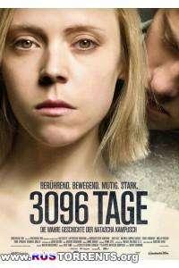 3096 дней | HDRip