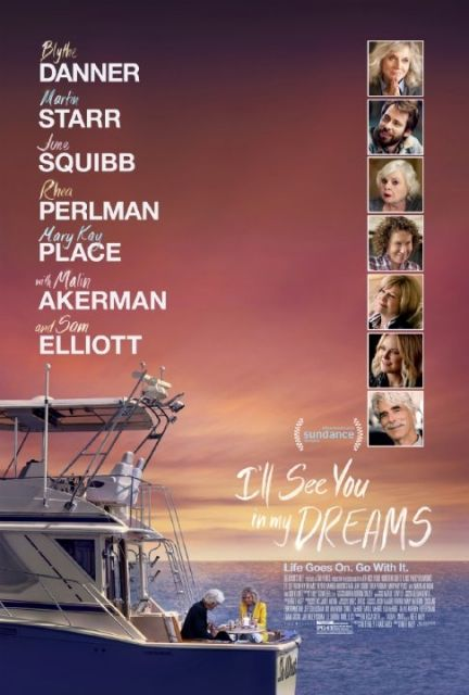 I Will See You in My Dreams (2015) atsisiusti