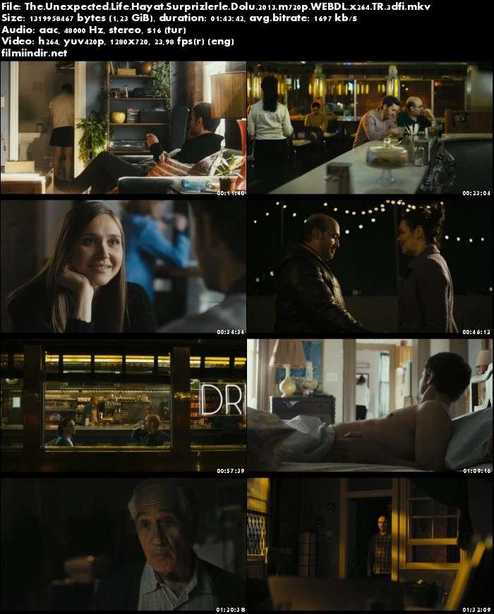 Hayat Sürprizlerle Dolu - The Unexpected Life (2013)