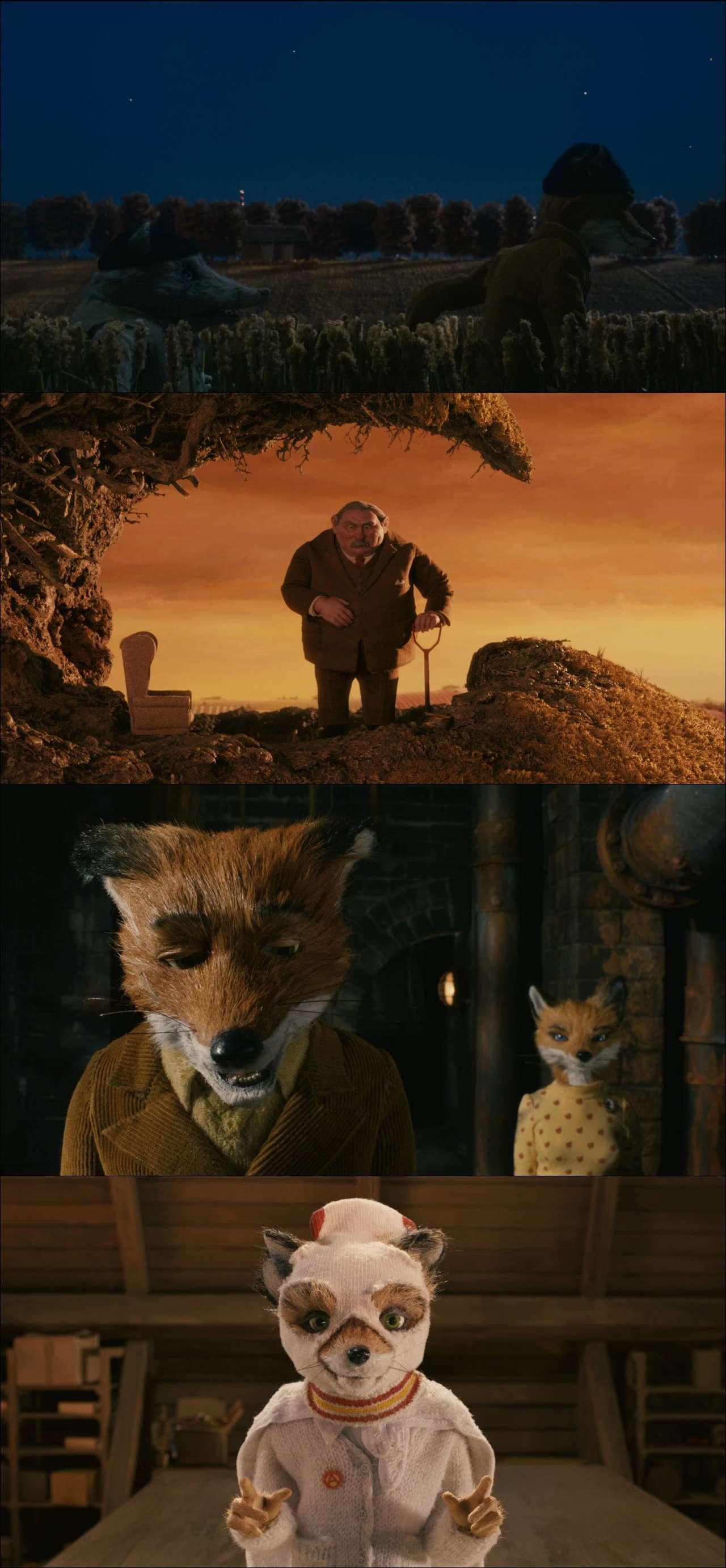 Yaman Tilki - Fantastic Mr. Fox (2009) türkçe dublaj film indir