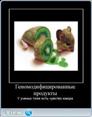 Демотиваторы от Kleinberg vol.2