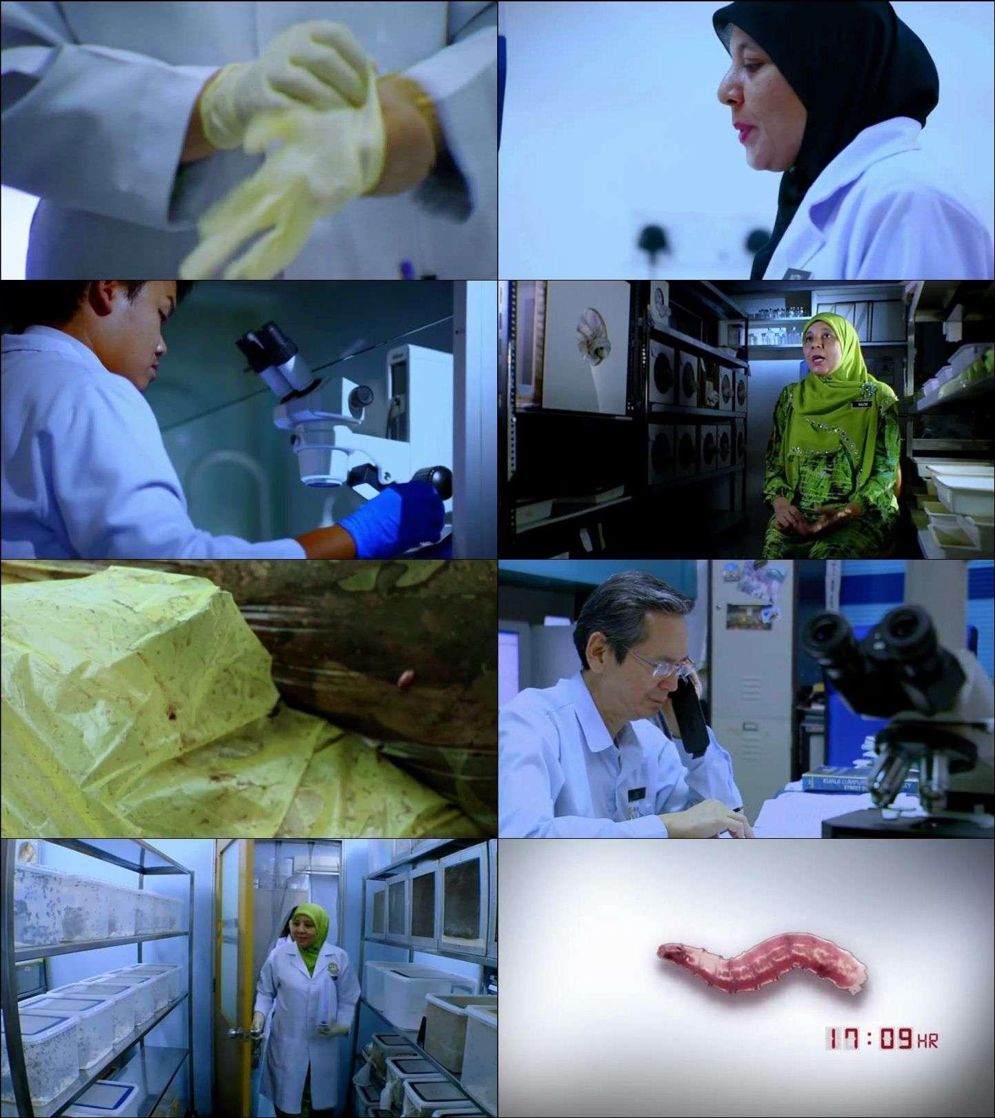 Suç Ortakları - Partners in Crime (2012) Yabancı dizi 1. ve 2. Sezonlar türkçe dublaj indir