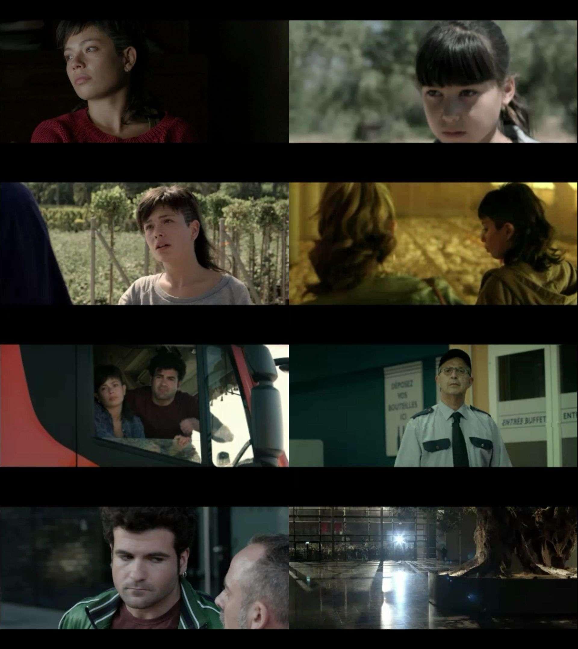 Zeytin Ağacı - The Olive Tree (2016) türkçe dublaj hd film indir