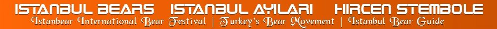 IstanbulBears