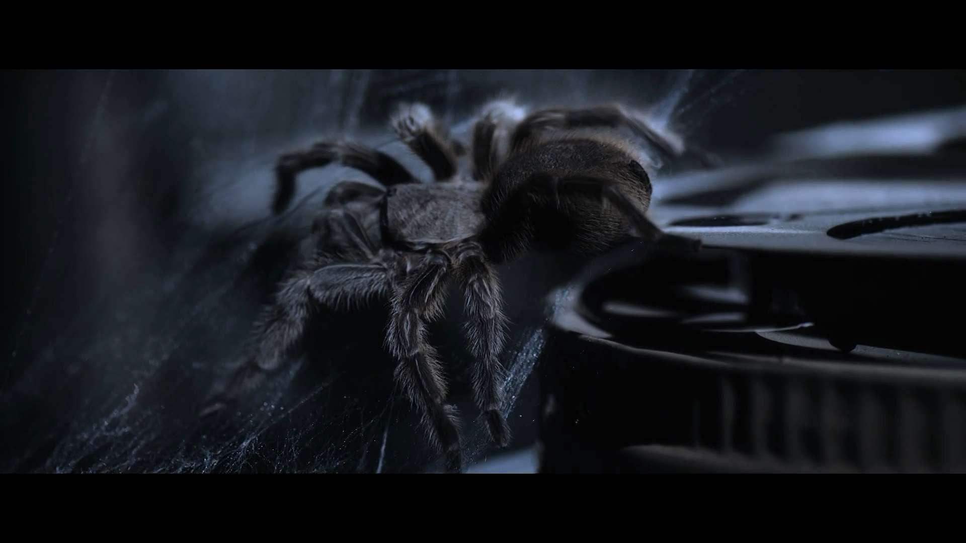 Страх приближается | WEBRip 1080p | L