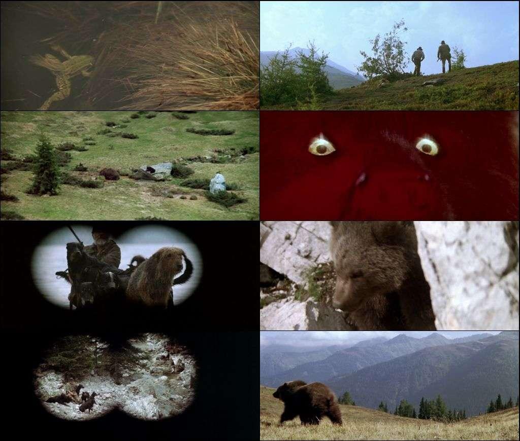Ayı - L'ours (1988) türkçe dublajlı hd film indir