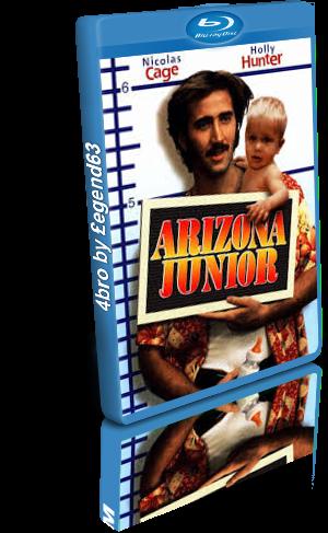 Arizona junior (1987).mkv BDRip 480p x264 AC3 iTA