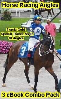 Horse Racing Angles eBook