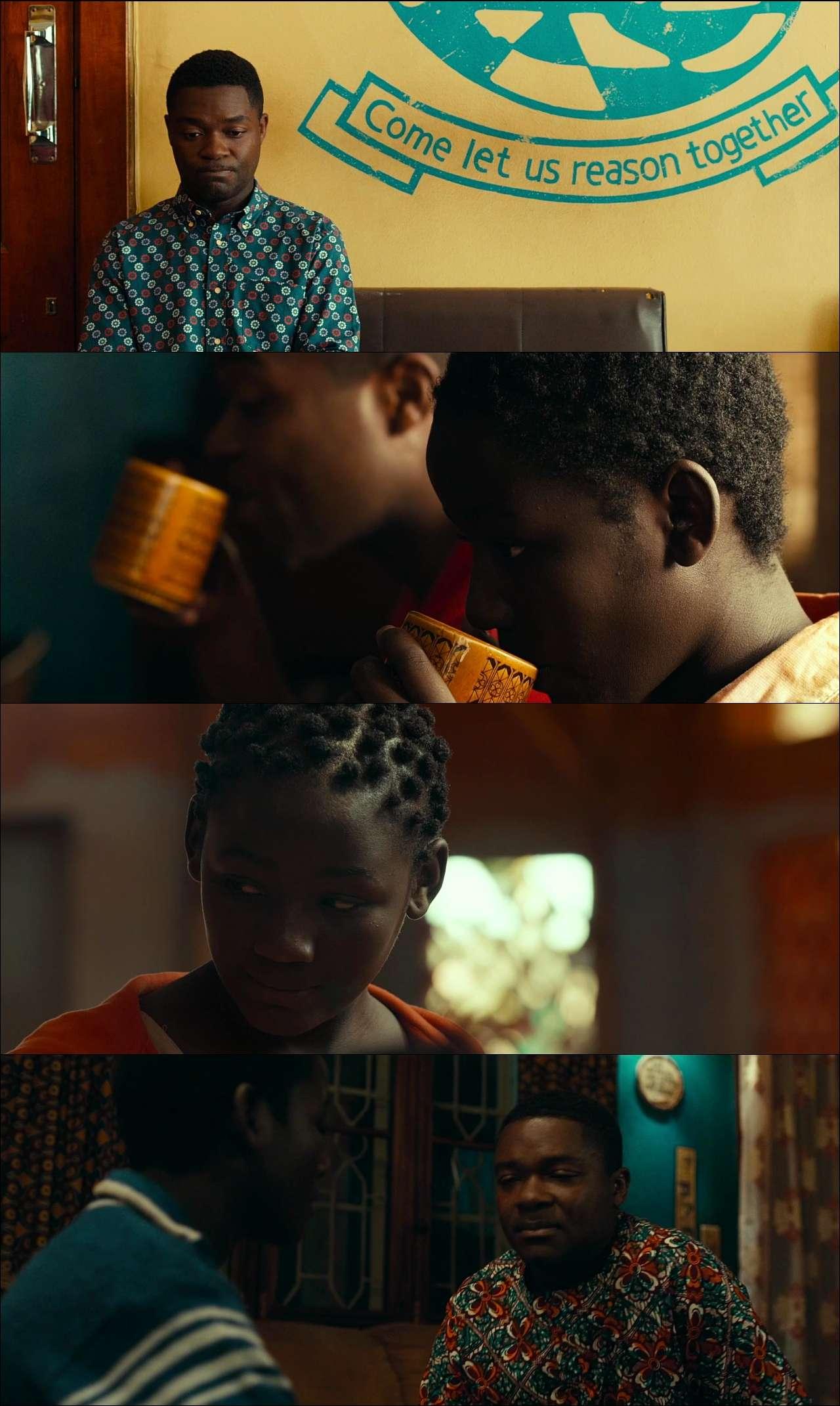 Queen of Katwe (2016) türkçe dublaj film indir