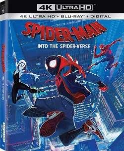 Spider-Man: Un Nuovo Universo (2018).mkv MD AC3 720p WEBDL - iTA