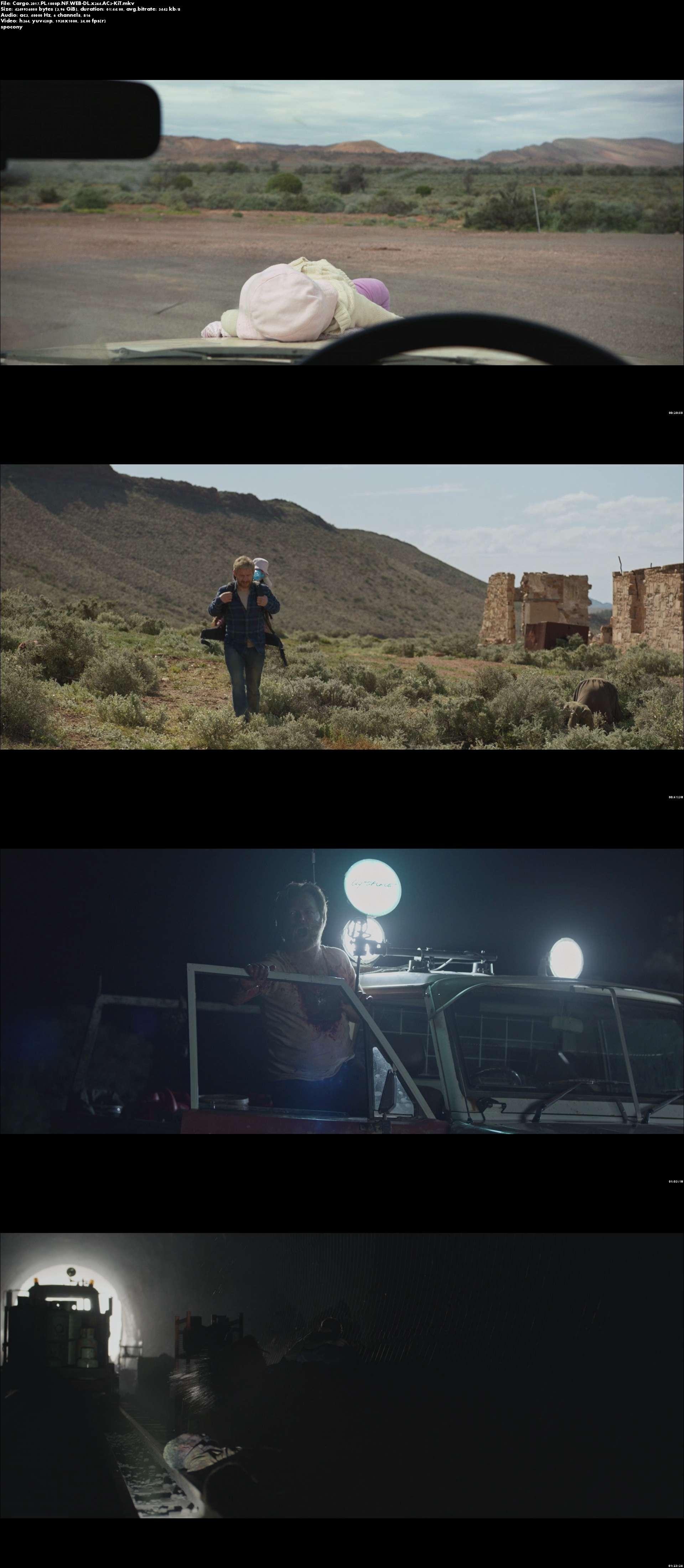 Ładunek / Cargo (2017