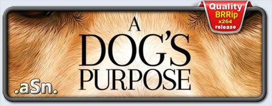 A Dog's Purpose (2017)
