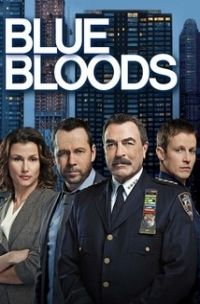 download series Blue Bloods S08E11 Second Chances