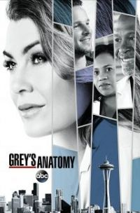 download series Grey's Anatomy S14E05 Danger Zone