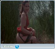 Каприз. Любовь и страсть / Capriccio. Love and Passion (1987) DVD5 / DVDRip / DVDRip-AVC