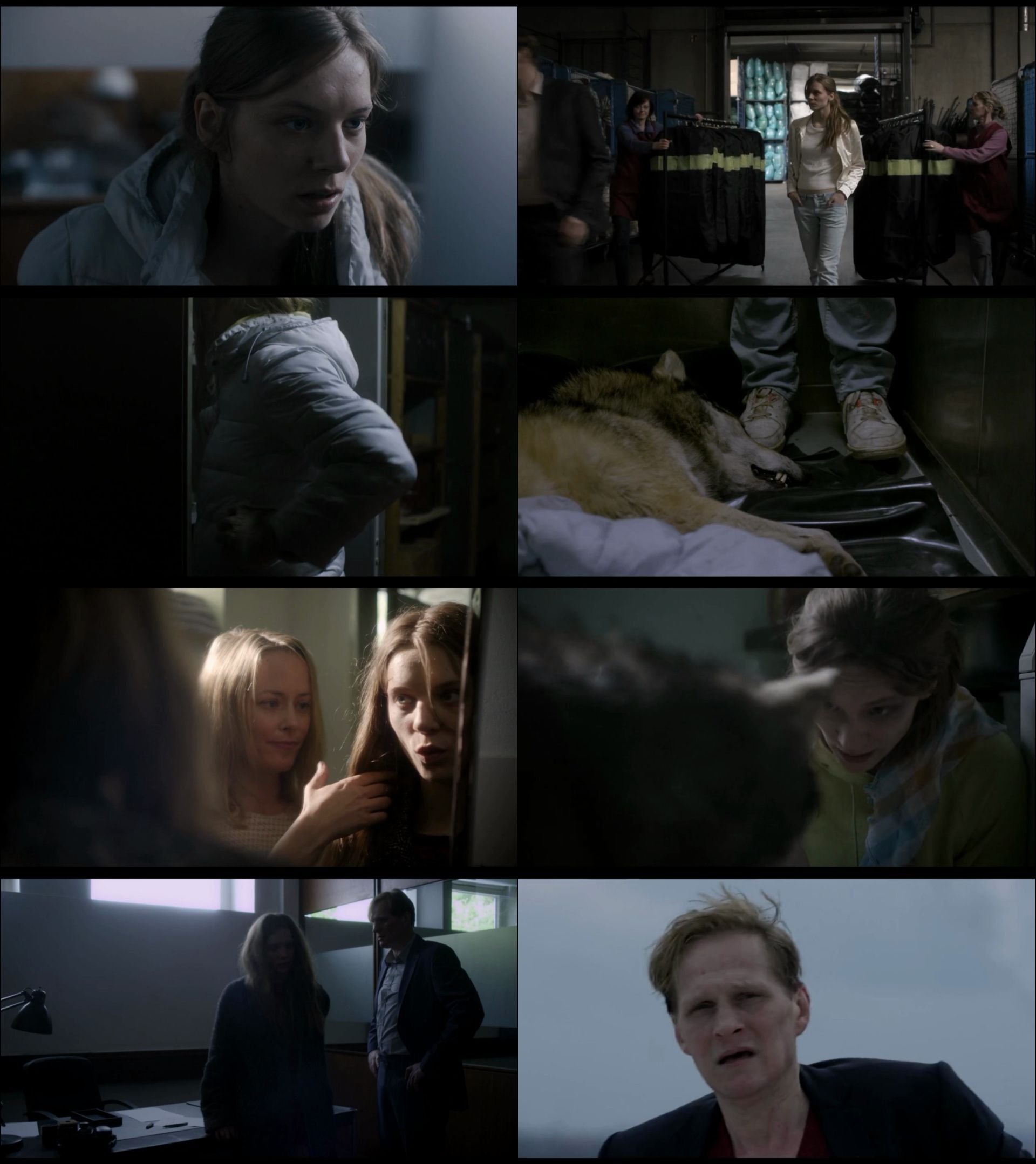 Vahşi - Wild (2016) türkçe dublaj film indir
