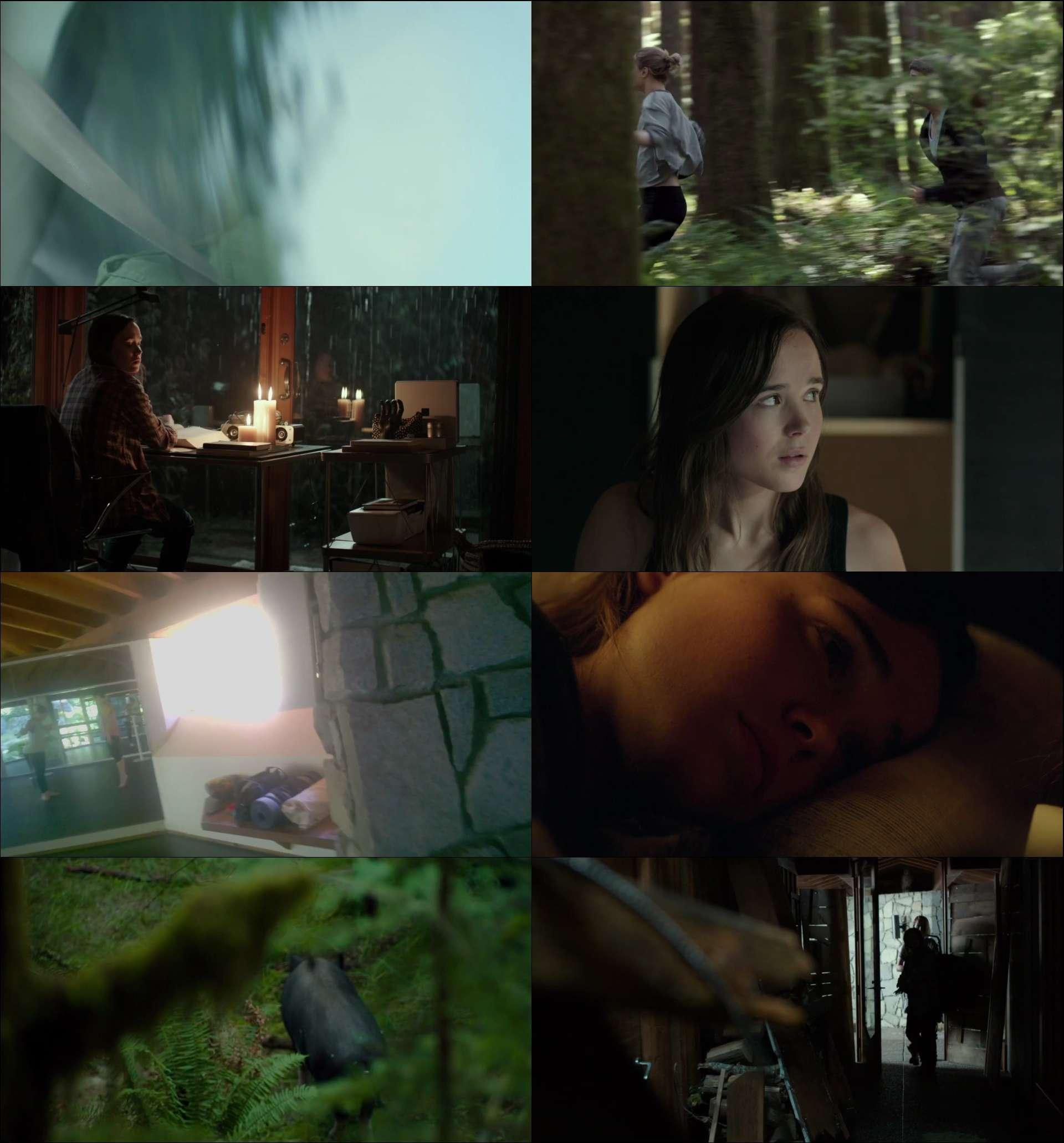 Into the Forest - Ormana Doğru (2015) türkçe altyazılı film indir