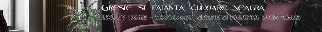 http://gresie-faianta-baia-mare.blogspot.com/2018/08/gresie-si-faianta-de-culoare-neagra.html