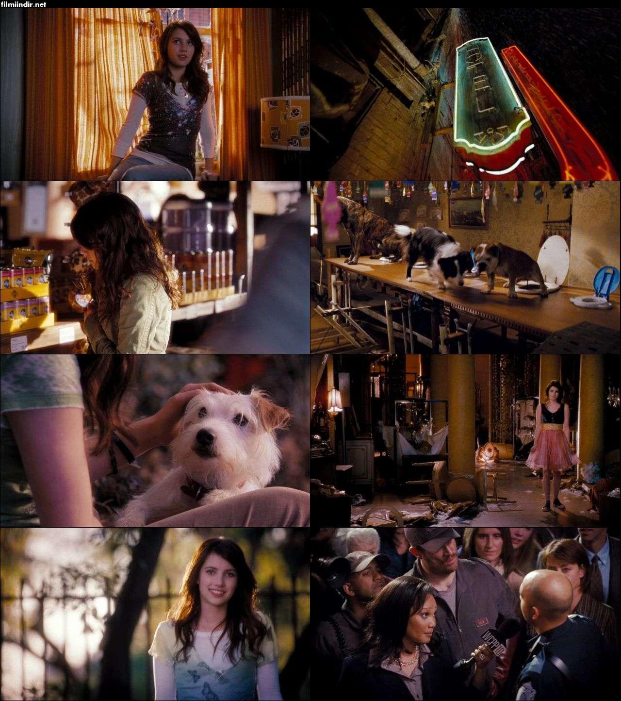 Köpek Oteli - Hotel for Dogs (2009) türkçe dublaj film indir