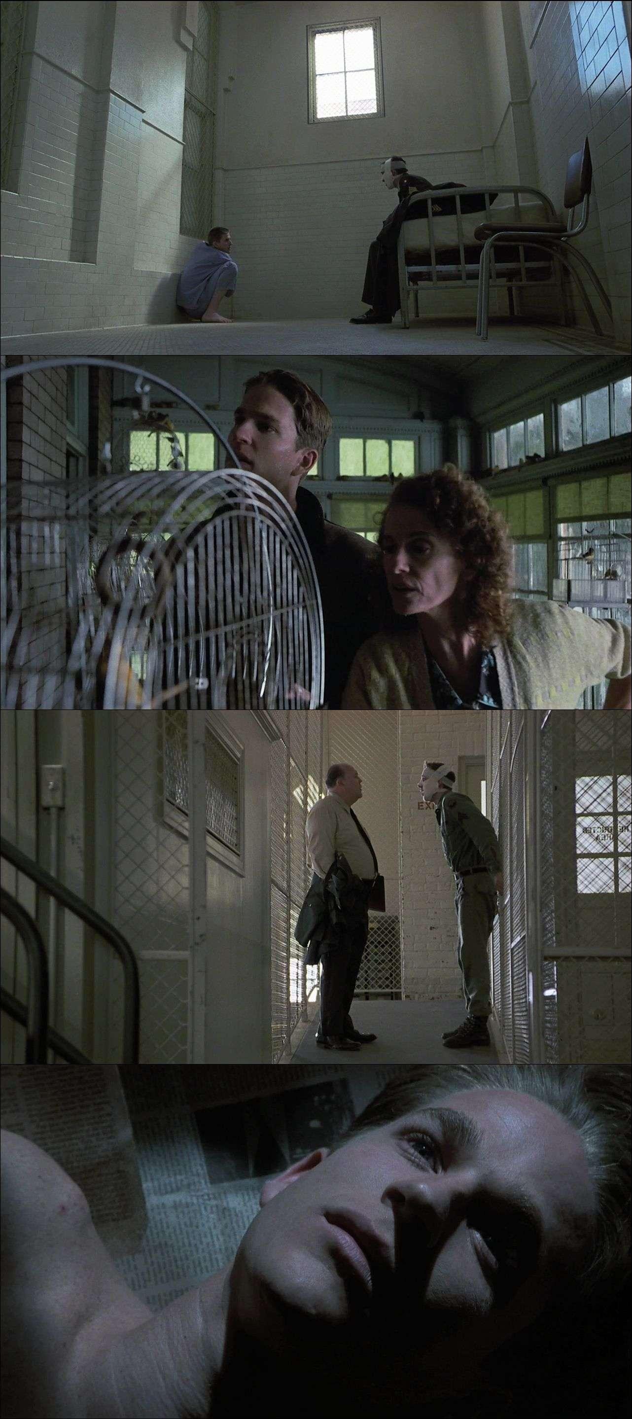 Birdy (1984) türkçe dublaj film indir
