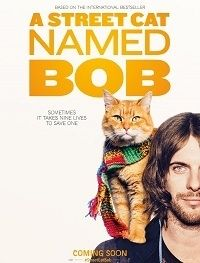 Уличный кот по кличке Боб | HDRip | Лицензия