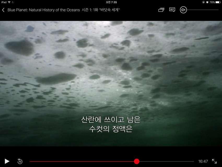 실존하는 정액 바다;