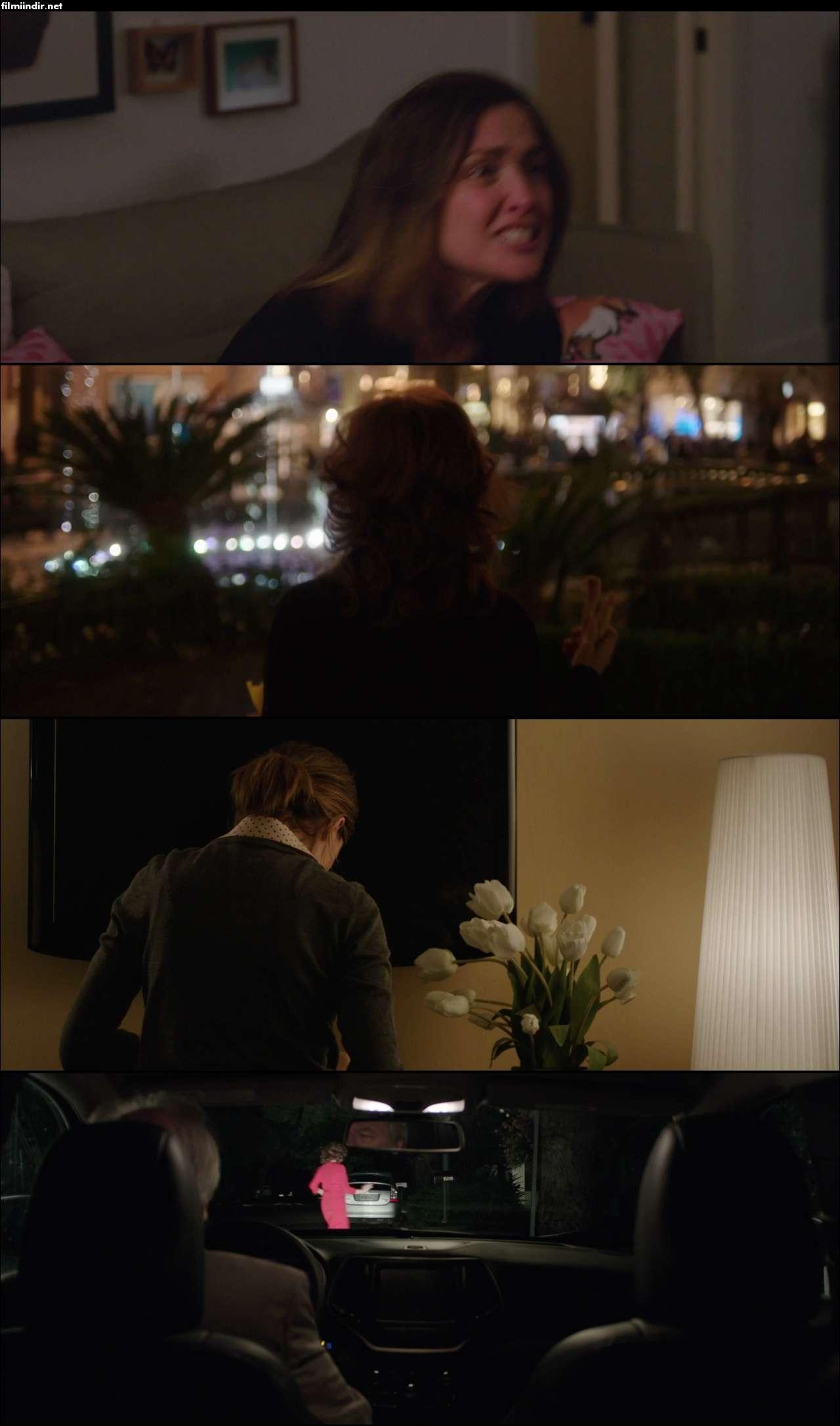 The Meddler (2015) türkçe dublaj hd film indir