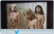 Женщины из 9-го блока / Women In Cellblock 9 (1978) HDRip / DVDRip