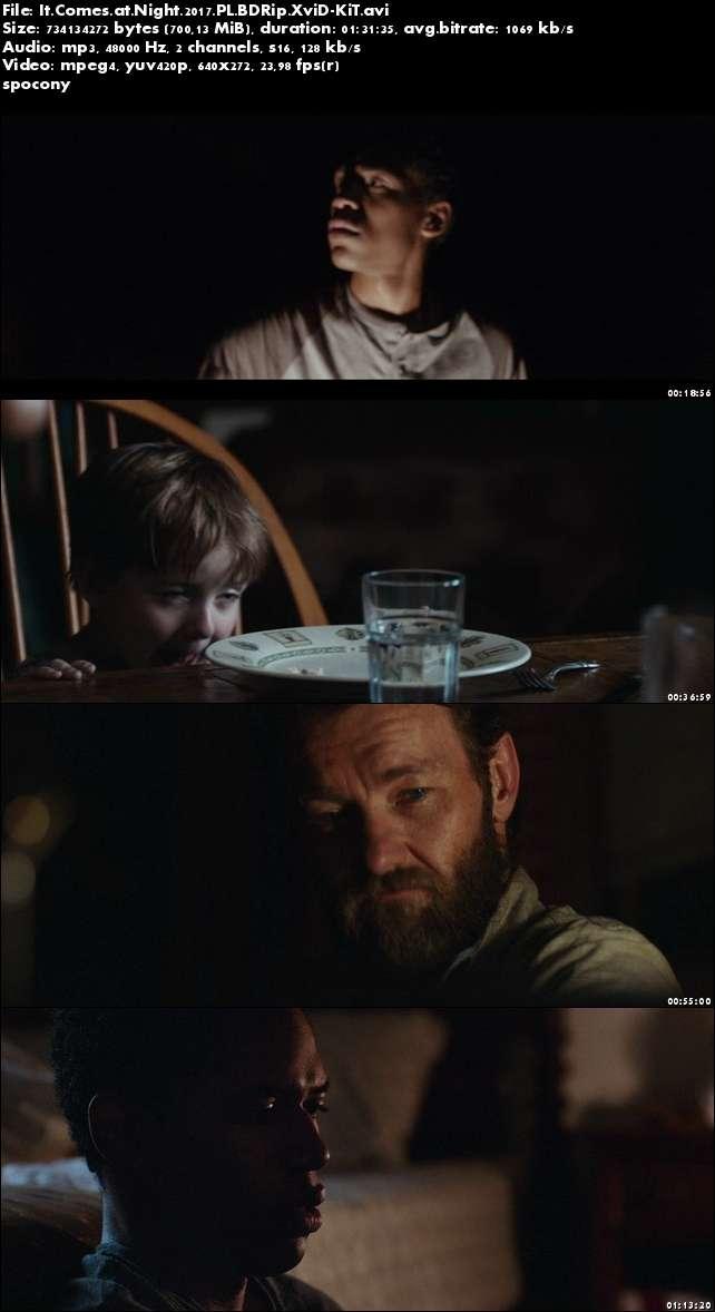 To przychodzi po zmroku / It Comes at Night (2017)