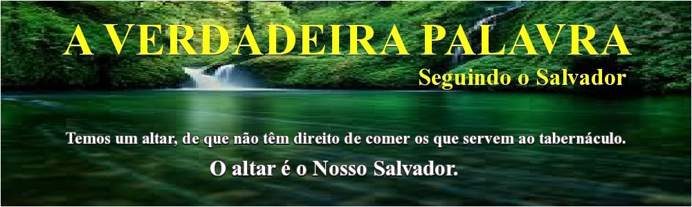 A VERDADEIRA PALAVRA - Seguindo o Salvador