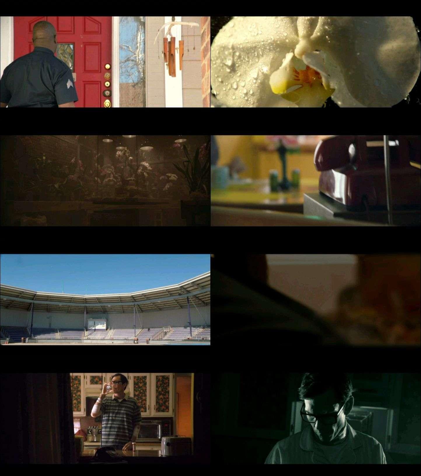 Çürüme - Decay (2015) türkçe dublaj film indir