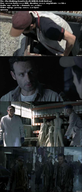 Żywe Trupy / The Walking Dead (2010) {Sezon 1} (Pełen sezon) PL.WEB-DL.XviD-DeiX [Lektor PL]