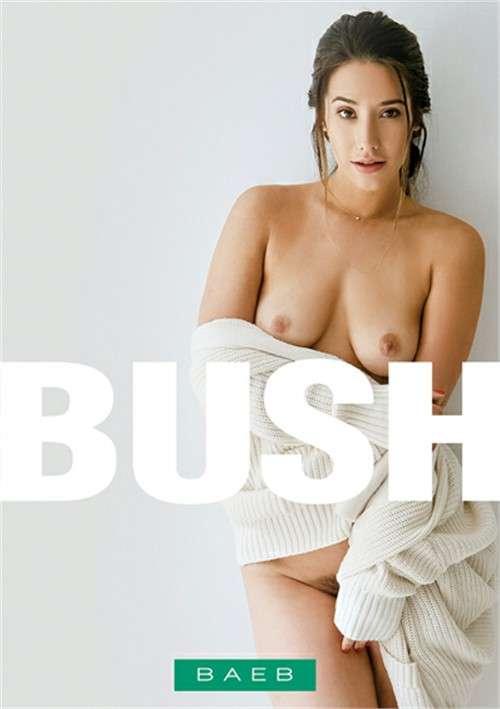 Мохнатки | Bush