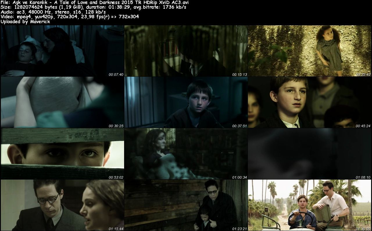 Aşk ve Karanlık - 2015 Türkçe Dublaj HDRip XviD AC3 indir