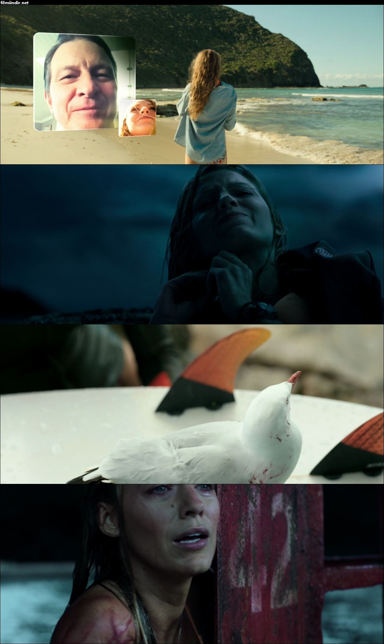 Karanlık Sular - The Shallows (2016) türkçe dublaj indir