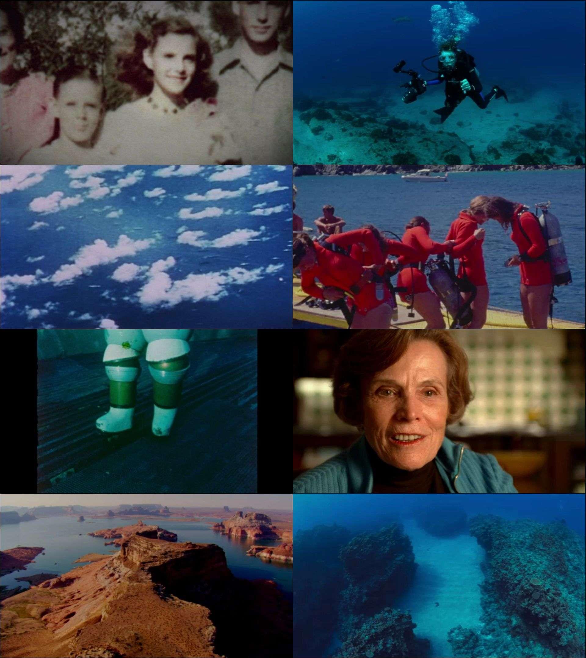 Mavi Görev - Mission Blue (2014) türkçe dublaj film indir