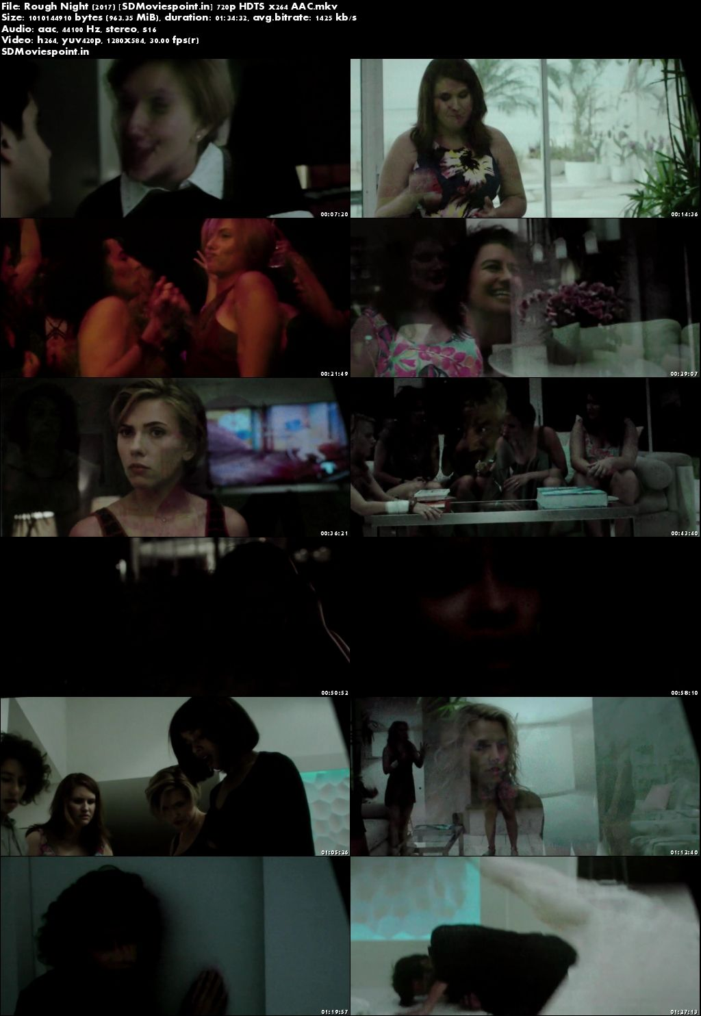 Screen Shot Rough Night 2017 Full English Movie Download 720p