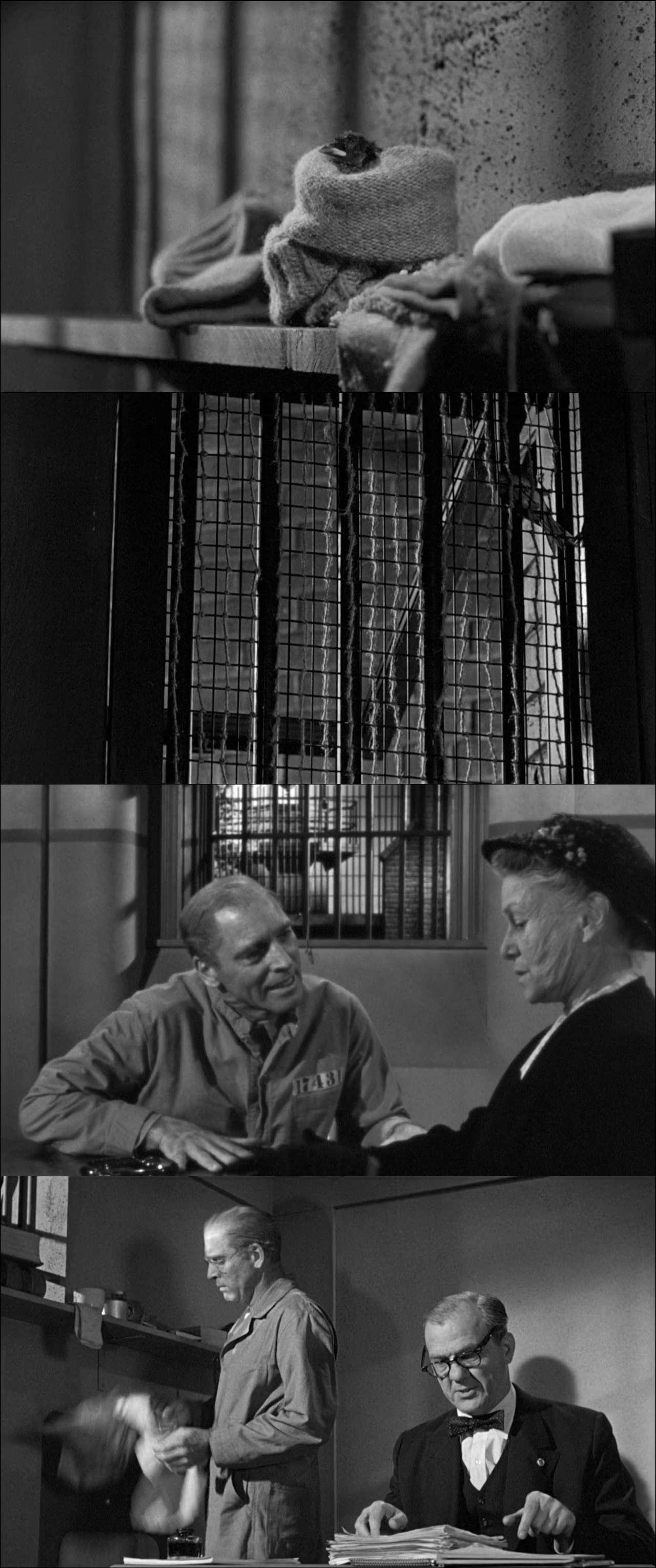 Alkatraz Kuşçusu - Birdman of Alcatraz (1962) türkçe dublaj film indir