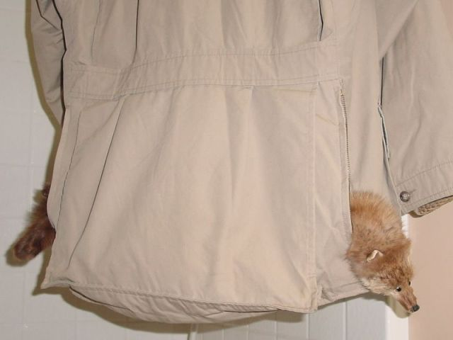 raincoat026small.jpg