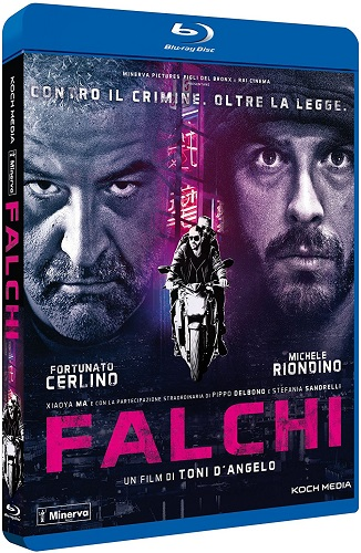 Falchi (2017) mkv Bluray 480p AC3 ITA x264 DDN