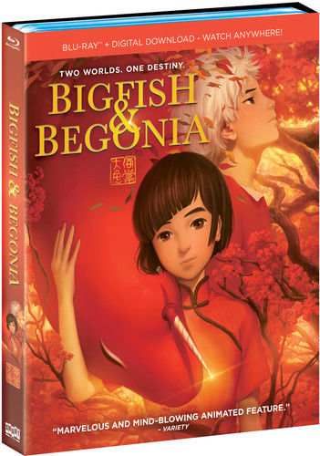 Big Fish & Begonia (2018) BluRay Full AVC DD ITA - DDN