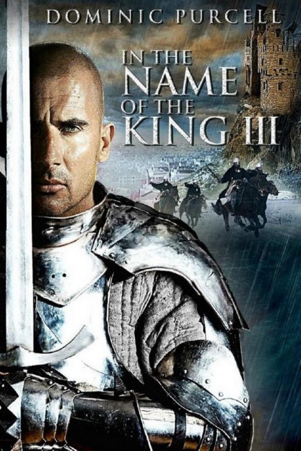 In The Name Of The King 3 (2014) BDRA 3D BluRay AVC DTS-HD ITA ENG Sub - DDN