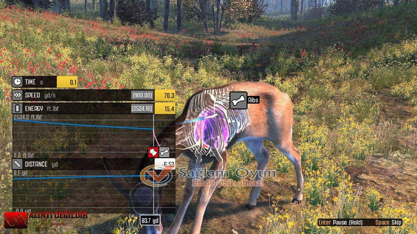 cabelas-big-game-hunter-pro-hunts-full-tek-link-indir