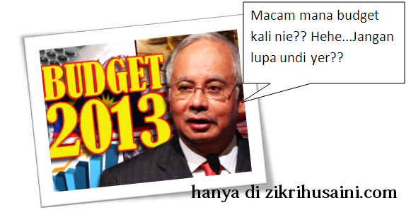 http://imageshack.us/a/img443/1702/budget2013.png