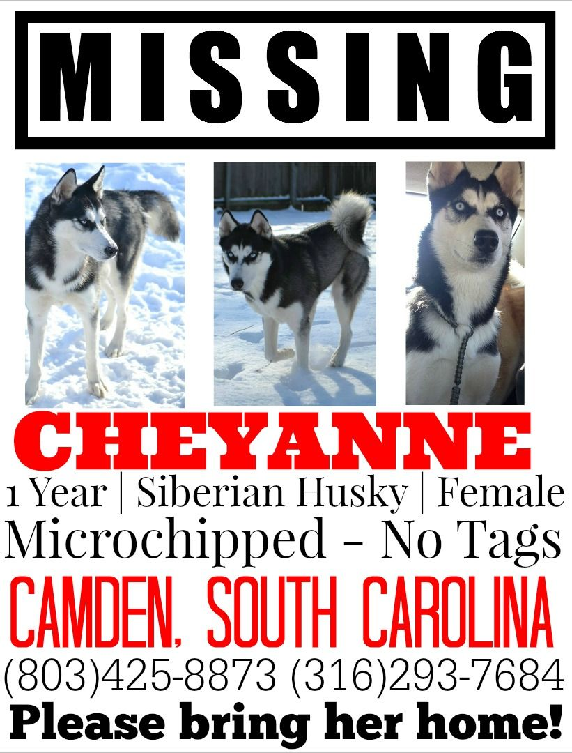 Help Please! SC Husky Owners! F6b038