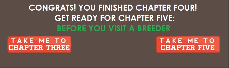 Chapter4Nav